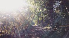 Herbstsonne genießen