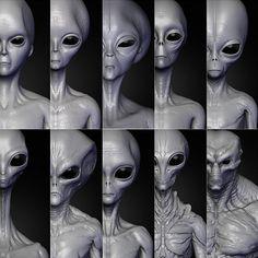 Realistic Aliens Sculpts Full Pack Model in Alien Aliens And Ufos, Ancient Aliens, Alien Soldier, Alien Pictures, Alien Sightings, Sci Fi Wallpaper, Alien Drawings, Grey Alien, Alien Tattoo