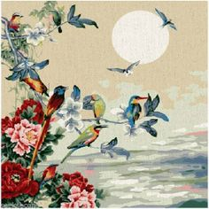 Framed Paint by Numbers kit 40x40cm (16x16'') Birds DIY PBN Painting HY6004