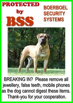 Boerboel novelty security beware of the dog sign Silly Dogs, Big Dogs, I Love Dogs, Puppy Love, Dogs And Puppies, Doggies, South African Boerboel, Beware Of Dog, English Mastiff