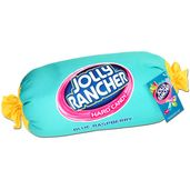 Just found Blue Raspberry Jolly Rancher Squishy Candy Pillow Thanks for the Candy Pillows, Food Pillows, Cute Pillows, Fluffy Pillows, Throw Pillows, Jolly Rancher Hard Candy, Candy Room, Pillow Room, Pillow Talk