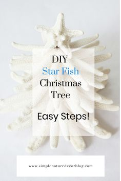 In a few easy step create BEAUTIFUL Star Fish Christmas tree. #coastaldecor #Christmastree #Christmascrafts Natural Christmas, Homemade Christmas, Christmas Wreaths, Christmas Crafts, Christmas Decorations, Christmas Tree, Coastal Bedrooms, Coastal Living Rooms, Coastal Homes