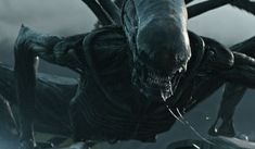 The Bottom Line: May 19th, 2017 Quick Takes – Ridley Scott returns to the Alien franchise once more this weekend with Alien: Covenant.…