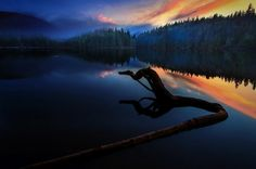 Photo The Lake Monster by Carlos Rojas on 500px