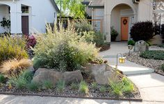 Front yard ideas no grass lawn alternative Front yard ideas no grass beautiful front yard ideas no grass driveways Landscaping With Boulders, Water Wise Landscaping, River Rock Landscaping, Modern Landscaping, Landscaping Plants, Front Yard Landscaping, No Grass Yard, Front Yard Garden Design, Sacramento Valley