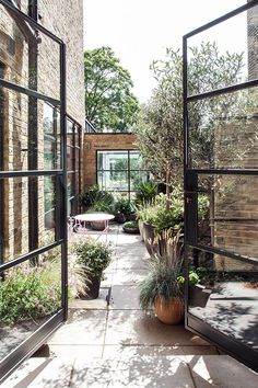 Friern Road - Red Squirrel Architects
