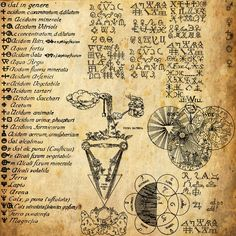 Catamara Rosarium interview with an alchemist Magical Recipes Online Discount Products alchemy oil blends herbal bledns