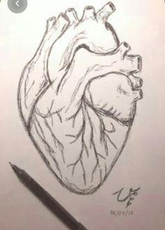 Art Drawings Sketches Simple, Sketchbook Drawings, Pencil Art Drawings, Easy Drawings, Heart Pencil Drawing, Love Drawings, Human Heart Drawing, Girl Crying Drawing, Drawing People