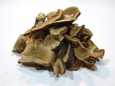 Lingzhi has been used as a medicinal mushroom in traditional Chinese medicine for over 2,000 years. Also known as red reishi or reishi, it is highly prized throughout Asia as a herbal tonic, where it has numerous reputed health benefits.