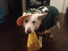 My baby! In her pack gear