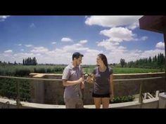 EAT SLEEP TRAVEL Dégustation de vins à Mendoza - YouTube Blog Voyage, Mendoza, Wine Tasting Party