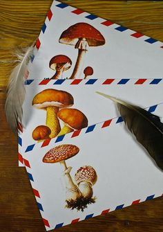 Lovely mushroom-illustrated airmail envelopes #stationery #post #toadstool #woodland
