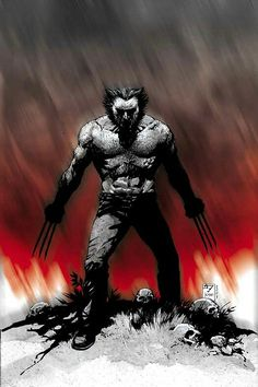 WOLVERINE by J H Williams III