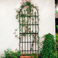 Rankgitter Parc floral: Amazon.de: Garten