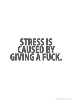 BUT it can be good or bad stress. Give a fuck about the things that matter and stress over them appropriately. And the bad stuff.well, stop giving a fuck about that. Motivacional Quotes, Great Quotes, Words Quotes, Quotes To Live By, Funny Quotes, Inspirational Quotes, Crush Quotes, Funny Humor, Funny Pics
