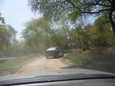 We made a short single day trip to Lahore Safari Park with family on 30th March, 2012