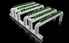 Growing with Class: #NorthAmerican #Hydroponics in the classroom