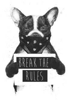 """coolpops: """" Rebel dog by Balazs Solti - Buy Print and Stuff (stickers, apparel, tapestry, mugs, pillows, clocks, sheets, towels, device cases, cards, shower curtains, pouches, etc.) HERE """""""