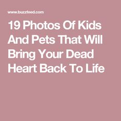 19 Photos Of Kids And Pets That Will Bring Your Dead Heart Back To Life