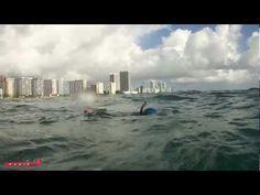 Океан для начинающих: репортаж из Майами ведет Михаил Кузнецов