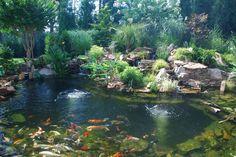 43 Stunning Garden Pond Waterfall Design Ideas - Home/Decor/Diy/Design Backyard Water Feature, Ponds Backyard, Backyard Decks, Backyard Waterfalls, Patio, Koi Pond Design, Garden Design, Goldfish Pond, Garden Waterfall