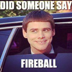 """Did someone say Fireball?"" #fireball #whiskey #cinnamon_whiskey"
