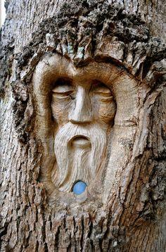 Tree Spirit Carvings by Keith Jennings                              …