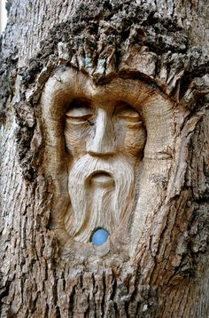 Tree Spirit Carvings by Keith Jennings                              …