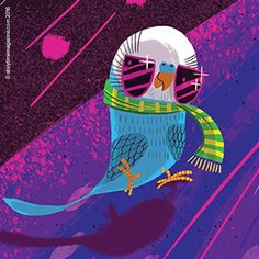 A brilliant boogying budgie for our Brian Moses poem in Storytime Issue 25! Art by the awesome Josh Cleland (http://www.joshcleland.com) ~ STORYTIMEMAGAZINE.COM
