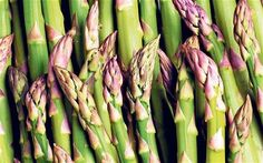Asparagus is a herb cum vegetable which has numerous health benefits. It is used to cure Urinary disorders, Diarrhoea, Piles, Migraine and many Health Benefits Of Asparagus, Asparagus Seeds, Hangover Food, Mystery, Organic Gardening Tips, Natural Detox, Fruit And Veg, Edible Garden, Healthy Life