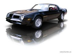 1976 Pontiac Trans Am 455 HO.  THIS is the year. I always  wanted.