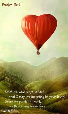 I love hot air balloons!