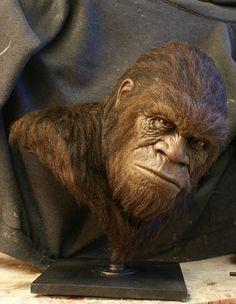 Bigfoot Face   chrisgrondin.com