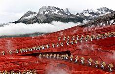 Lijiang, Impressions show, Jade Dragon Snow mountain at an altitude of 3600m, Yunnan, China    Dimitra Stasinopoulou