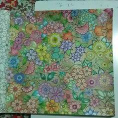 Flores do jardim secreto