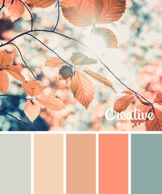 15 Downloadable Color Palettes For Fall