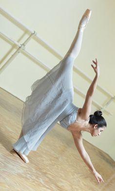 Ponche Dance Ballet Strength Flexibility Training Program EasyFlexibility