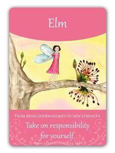 Elm - Bach Flower Oracle Card by Susanne Winberg. Message: Take on responsibility for yourself.