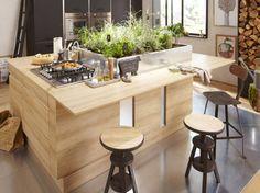 Îlot central en bois et plantes en intérieur