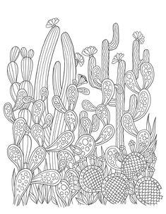 Jardins Des Delices, Fleurs Edition