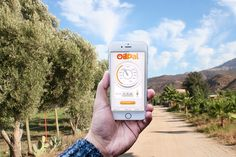 OilPal, monitor your home heating oil levels anytime, anywhere! Heating Oil, Monitor, App, Technology, Tech, Apps, Tecnologia