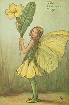 Fairy: The Primrose Fairy, by (CMB) Cicely Mary Barker, 1935