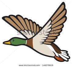 mallard duck flying (bird duck, flying duck) by Tribalium, via Shutterstock