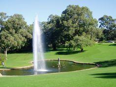 kings-park-fountain-perth-wa.