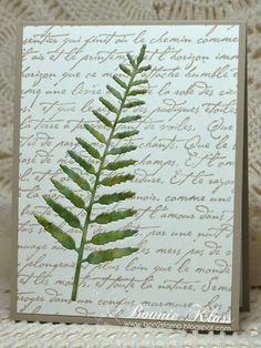 handmade card from Stamping with Klass ... clean and simple ... die cut fern frond detail: same die used to cut out from the background and then  to cut another from hand colored paper to enlay in the space ... luv it@!