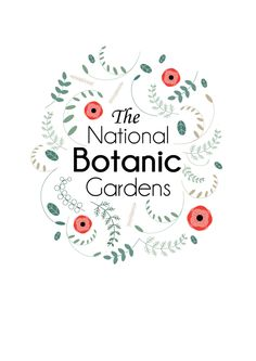 A poster series for the national botanic gardens. My Design, Graphic Design, Poster Series, Botanical Gardens, National Parks, Typography, Behance, Graphics, Illustrations