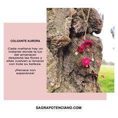 """El colgante Aurora simboliza el despertar de las flores abriendo sus pétalos y mostrando de nuevo su belleza al amanecer. ¡Renace con esperanza!. Forma parte de la colección """"Aurora"""". Colgante de flores realizadas a mano y de forma artesanal con botellas de plástico PET reciclado y cristal de Swarovski. De producción limitada con su numero y certificación.  Diseñado y producido enteramente en España de acuerdo a la filosofía del movimiento Slow, de forma sostenible y ecológica. Shape, Upcycling, Hanging Flowers, Dawn, Parts Of The Mass, Bottles, Author"""