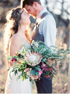 The bride will carry a loose, naturally shaped bouquet of baby eucalyptus, white veronica, olive leaves, burgundy hellabourous. silver dollar eucalyptus, fern sprigs, jasmine vine, blush pink kiera garden roses, burgundy and white astilbe and a large king protea as the focal point. The bouquet will be wrapped in a band of burgundy ribbon with smaller blush ribbons hanging down with the stems showing.