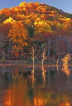New Jersey reflections