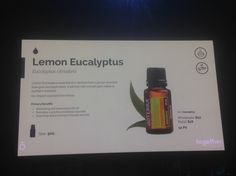 Lemon Eucalyptus, Positivity, Optimism